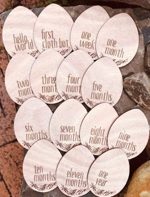 nest nappies milestone discs set