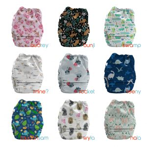 bubblebubs candies all in two cloth nappy